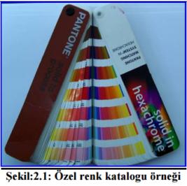 pantone renkler